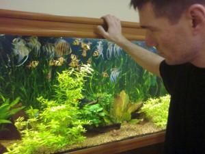 первый опыт аквариумиста
